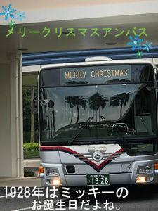 アンババスもクリスマス♪