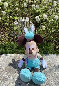 パークはお花がいっぱい ミッキーのランドお散歩